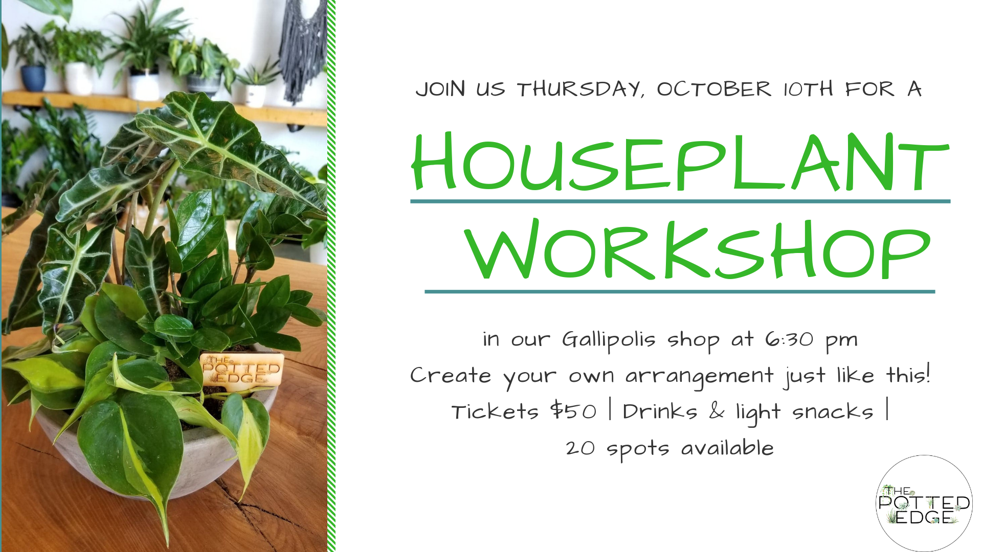 Potted Edge Houseplant Workshop
